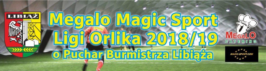 Megalo MagicSport Liga Orlika